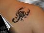Скорпионы / Scorpions