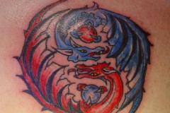 Драконы / Dragons